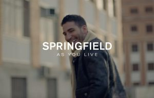 Foto campaña Springfield - A common life